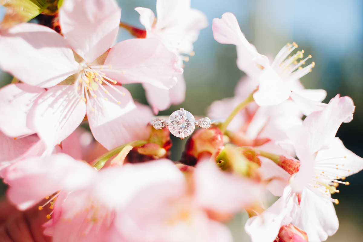 engagement shoot at manito park, spokane (ring)